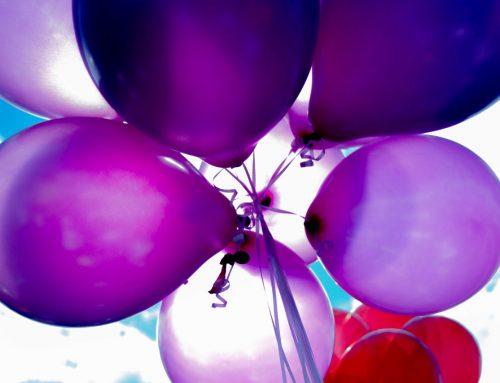 organisation anniversaire Avignon